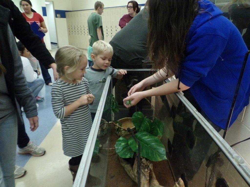 Preschoolers with reptile